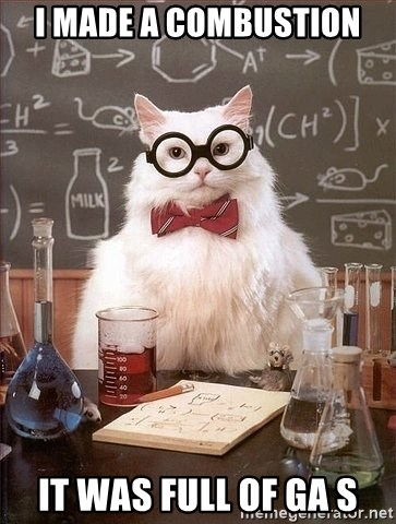 Chemistry Cat - i made a combustion it was full of gA s
