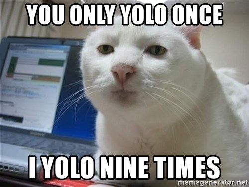 Serious Cat - you only yolo once I yolo nine times