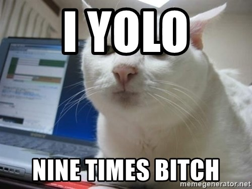 Serious Cat - I yolo nine times bitch