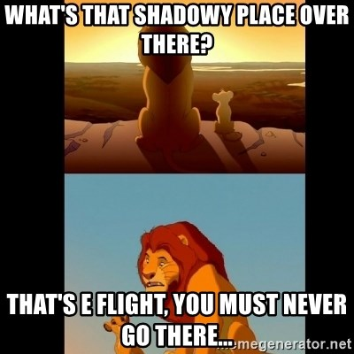 Lion King Shadowy Place - What's that shadowy place over there? That's E flight, you must never go there...