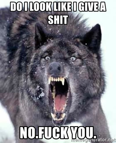 Angry Ass Wolf - do i look like i give a shit no.fuck you.