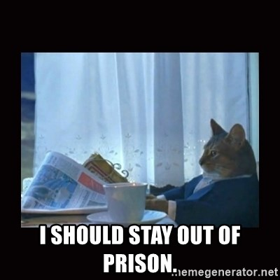 i should buy a boat cat -  I should stay out of prison.