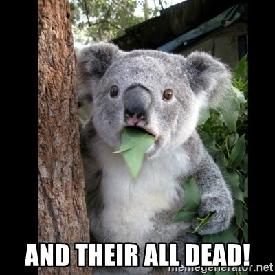 Koala can't believe it -  And their all dead!