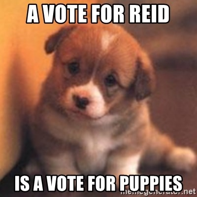 cute puppy - A Vote for reid is a vote for puppies