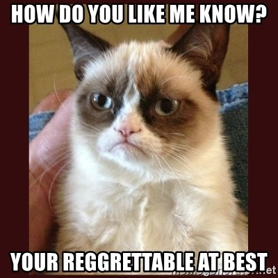Tard the Grumpy Cat - How do you like me know? Your Reggrettable at best
