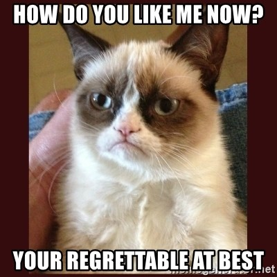 Tard the Grumpy Cat - how do you like me now? your regrettable at best