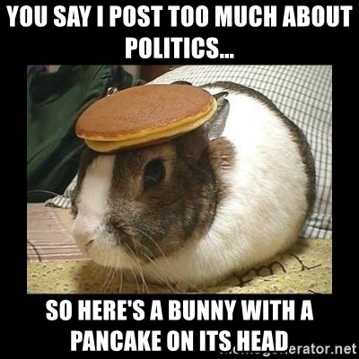 Bunny with Pancake on Head - You say i post too much about politics... so here's a bunny with a pancake on its head