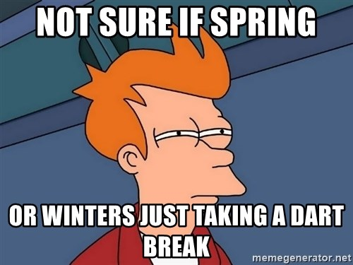 Futurama Fry - Not sure if spring Or winters just taking a dart break