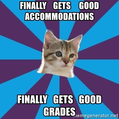Autistic Kitten - Finally    GetS     Good ACCOMMODATIONS  Finally   getS   Good Grades