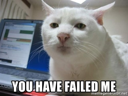Serious Cat -  You have failed me
