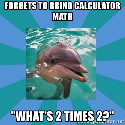"""Dyscalculic Dolphin - forgets to bring calculator math """"what's 2 times 2?"""""""
