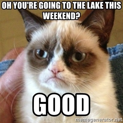 Grumpy Cat  - Oh you're going to the Lake this weekend? GOOD