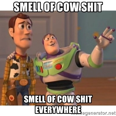 Toy story - Smell of cow shit Smell of cow shit everywhere