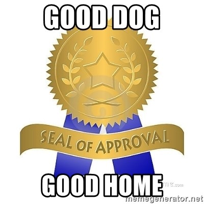 official seal of approval - Good dog good home
