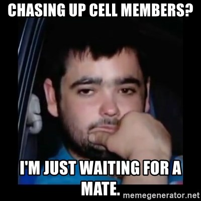 just waiting for a mate - Chasing up cell members? I'm just waiting for a mate.