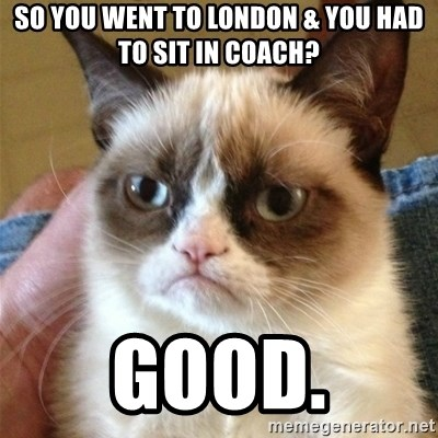 Grumpy Cat  - So you went to londOn & YOU HAD TO SIT IN COACH? GOOD.