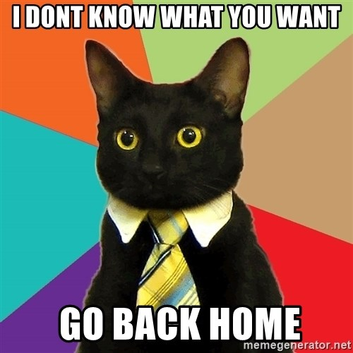 Business Cat - i dont know what you want  go back home