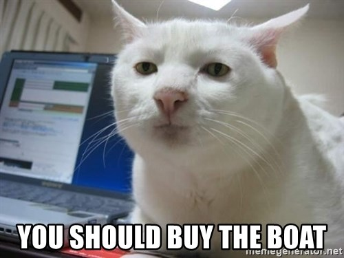 Serious Cat -  you should buy the boat
