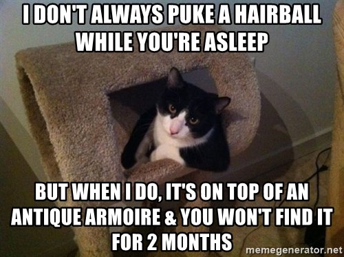 cool cat - I don't always puke a hairball while you're asleep but when i do, it's on top of an antique armoire & you won't find it for 2 months