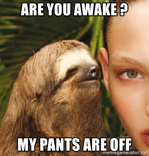 The Rape Sloth - are you awake ? my pants are off