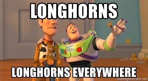 Consequences Toy Story - longhorns longhorns everywhere