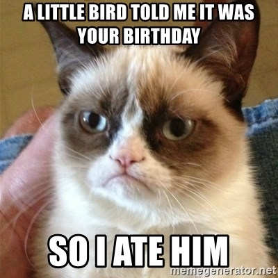 Grumpy Cat  - a little bird told me it was your birthday so i ate him