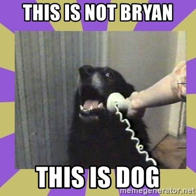 Yes, this is dog! - This is not bryan this is dog