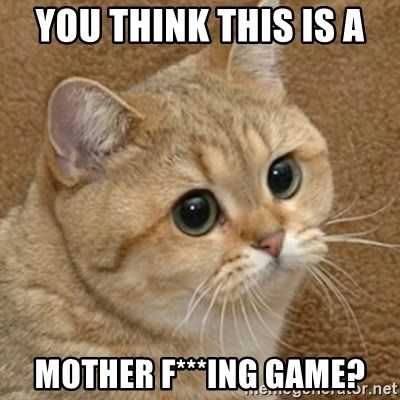 motherfucking game cat - You think this is a  mother f***ing game?