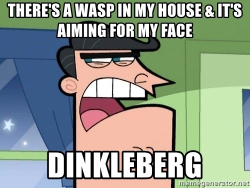 Dinkleberg - there's a wasp in my house & it's aiming for my face dinkleberg