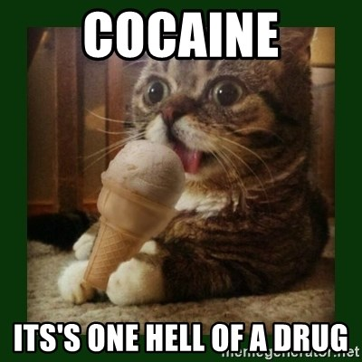 lil bub - cocaine its's one hell of a drug