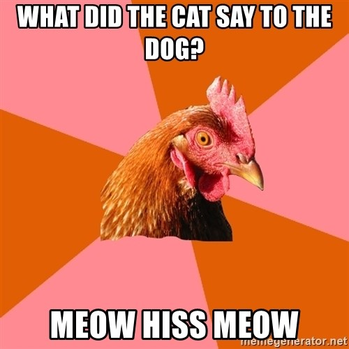 Anti Joke Chicken - what did the cat say to the dog? meow hiss meow