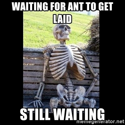 Still Waiting - waiting for ant to get laid still waiting