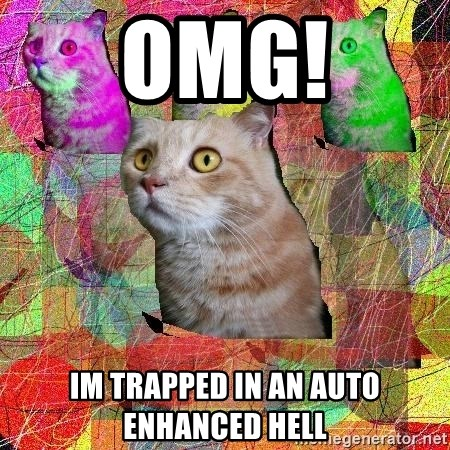 A Cat - omg! im trapped in an auto enhanced hell