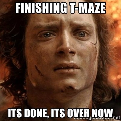 frodo it's over - Finishing t-maze its done, its over now