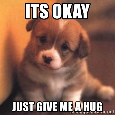 cute puppy - Its okay just give me a hug