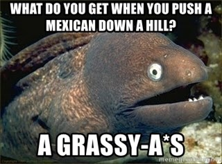 Bad Joke Eel v2.0 - what do you get when you push a mexican down a hill?  A Grassy-A*S