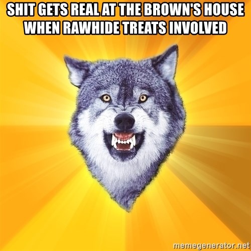 Courage Wolf - shit gets real at the brown's house when rawhide treats involved