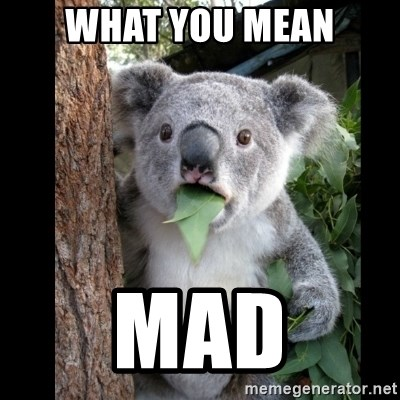Koala can't believe it - What you mean Mad