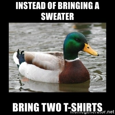 advice mallard - instead of bringing a sweater bring two t-shirts