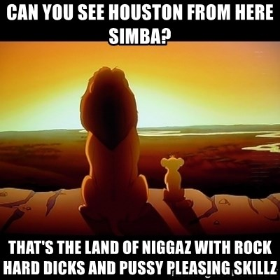 Simba - CAN YOU SEE HOUSTON FROM HERE SIMBA? THAT'S THE LAND OF NIGGAZ WITH ROCK HARD DICKS AND PUSSY PLEASING SKILLZ