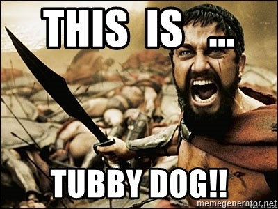This Is Sparta Meme - this  is   ... tubby dog!!