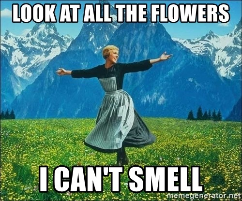 Look at all the things - look at all the flowers I can't smell