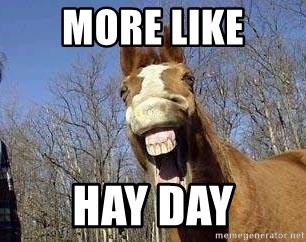 Horse - MORE LIKE HAY DAY