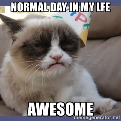 Birthday Grumpy Cat - normal day in my lfe awesome