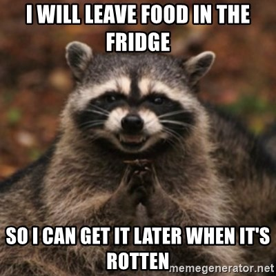 evil raccoon - I will leave food in the fridge so i can get it later when it's rotten