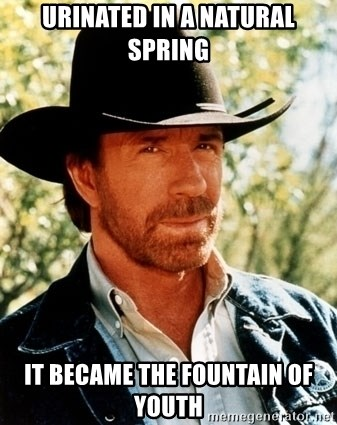 Brutal Chuck Norris - urinated in a natural spring it became the fountain of youth