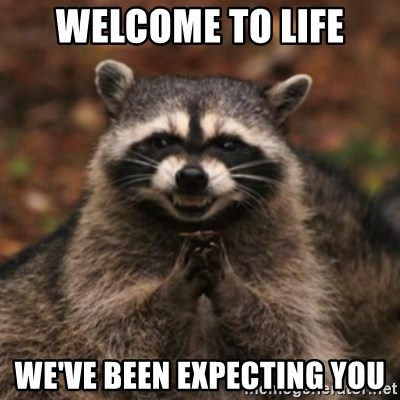 evil raccoon - Welcome to life We've been expecting you