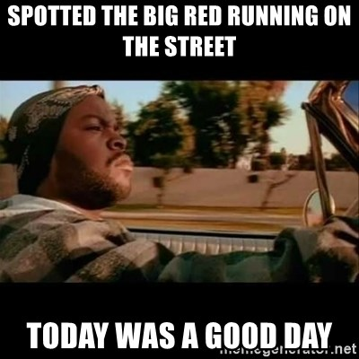Ice Cube- Today was a Good day - Spotted the bIg reD running on the street Today was a goOd day