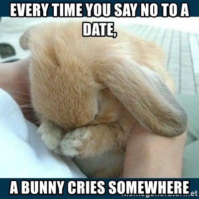 Bunny cry - Every time you say no to a date, a bunny cries somewhere