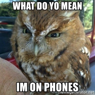 Overly Angry Owl - What do yo mean im on phones